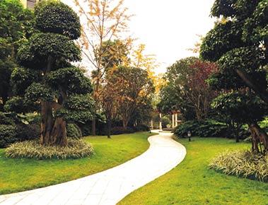 重庆金科公园王府 - 朗石社区景观设计